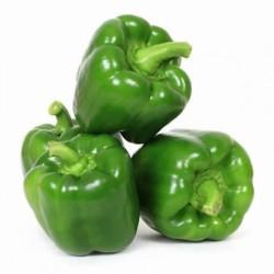 1601883777-h-250-0010763_green-capsicum-kudaimilagai-600x600.jpeg